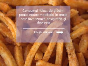 fries d